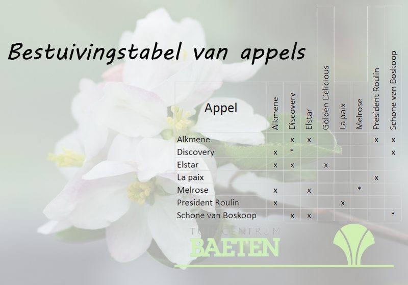 bestuivingstabel-voor-appels